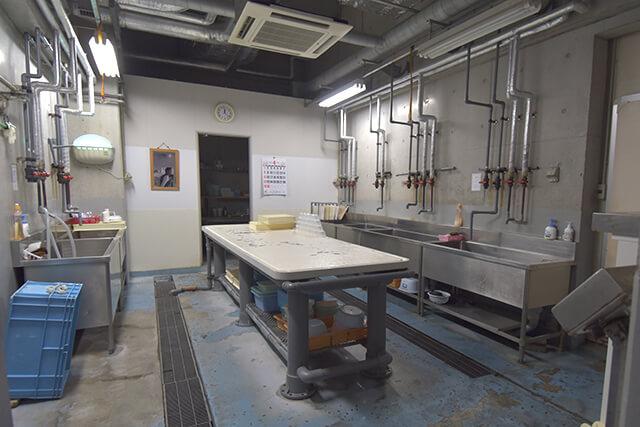 うみたまご 専用調理室