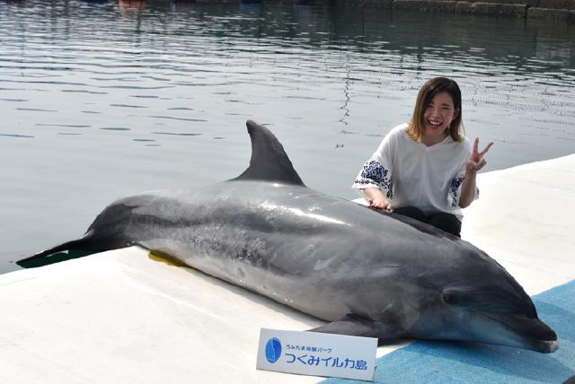 うみたま体験パーク つくみイルカ島 イルカとパチリ!