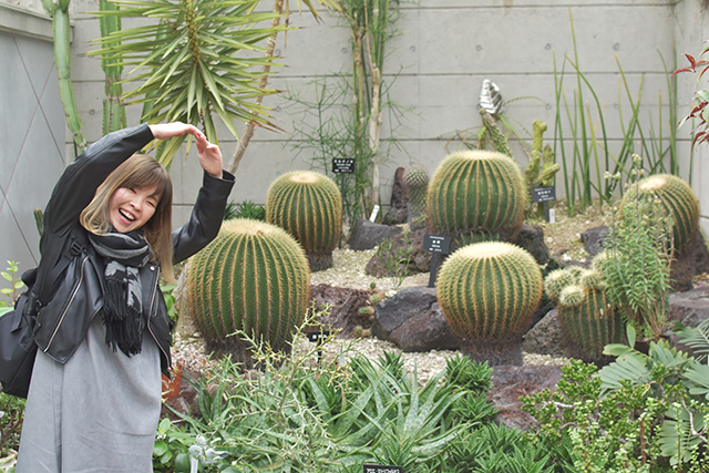 佐野植物公園 温室
