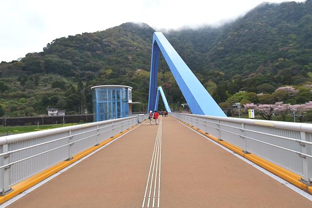高崎山 陸橋