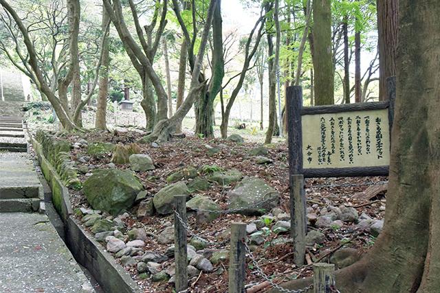 高崎山 おさるの国のエチケット