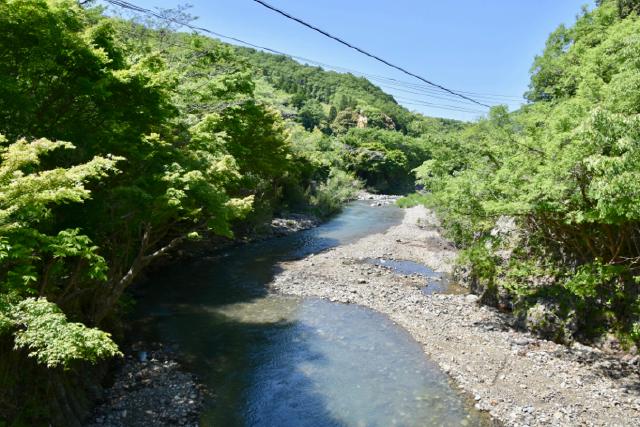 名水百選の「白山川」
