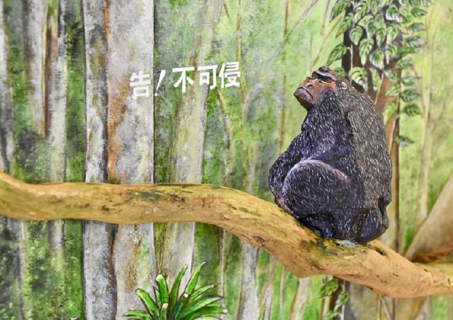 日出 石ころたちの動物園 猿