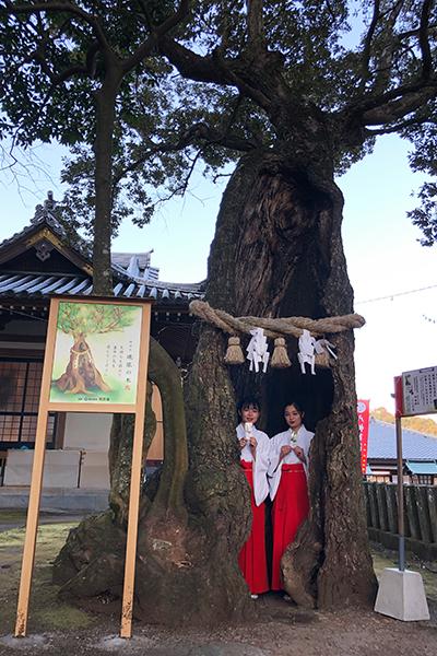 鬼滅の刃の聖地が別府に!-八幡竈門神社- 魂依の木巫女