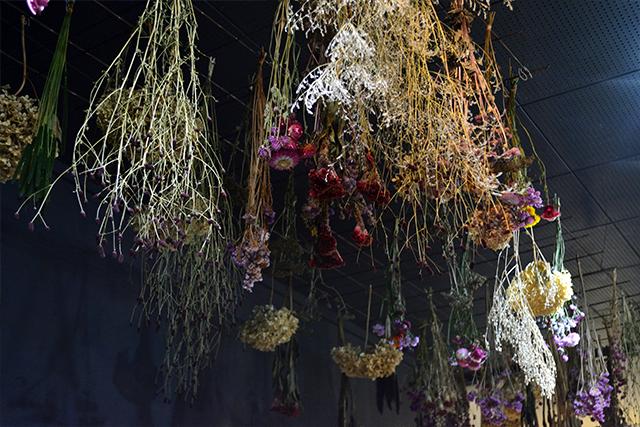 竹田 la vie en fleurs ドライフラワー