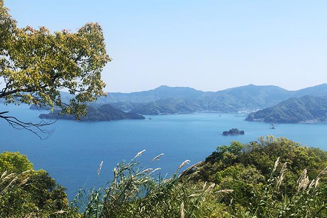 五感で感じる島時間-九州オルレ さいき・大入島- 遠見山展望所