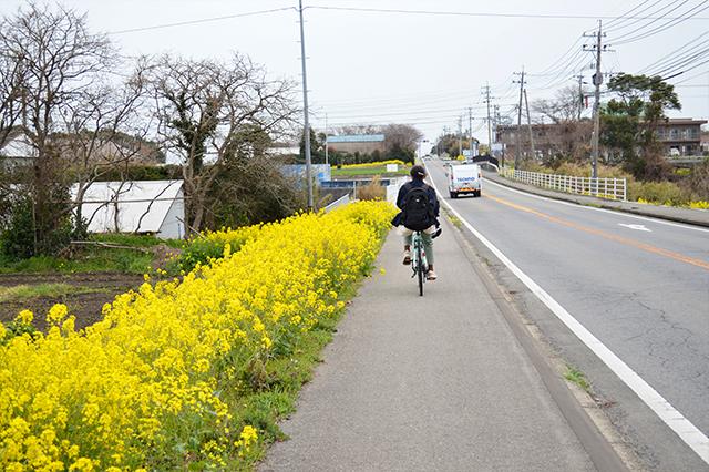 伊予灘からの春風にのって♪国東でマリンなサイクリング